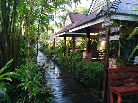 Sunda Resort : IMG_20170110_081519_large.jpg