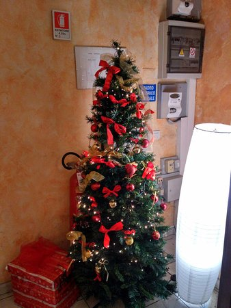 Hotel Leopolda: This Christmas tree greets you at the entrance to the hotel ;)