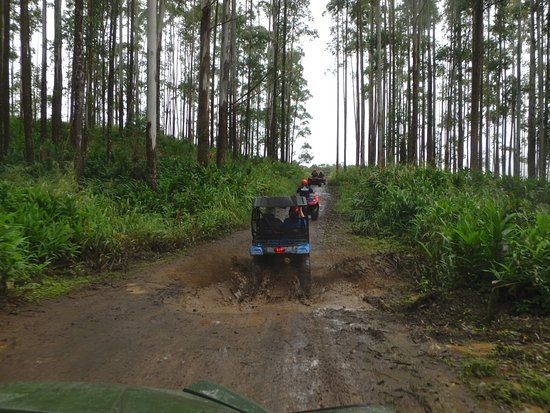 Kukuihaele, Hawái: Riding through the mudholes on the sugar cane roads above the Waipio Valley