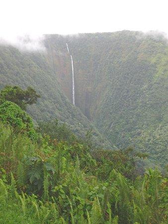 Kukuihaele, HI: Hi'ilawe Falls