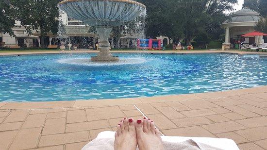 เคมพ์ตันพาร์ก, แอฟริกาใต้: view from the pool lounger