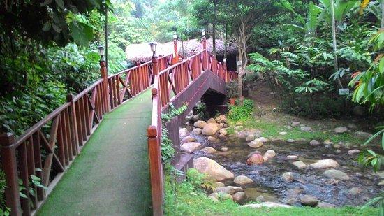 Raub District, ماليزيا: photo1.jpg