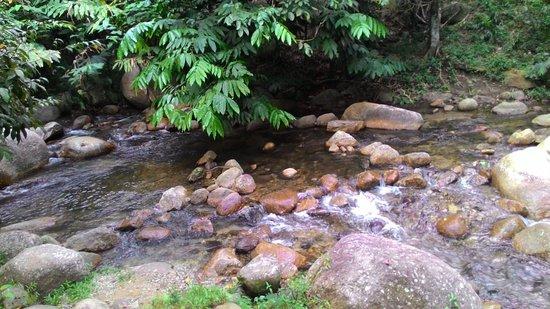Raub District, ماليزيا: photo3.jpg