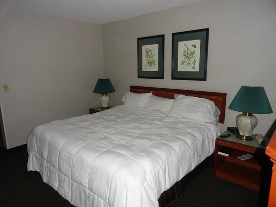 Shilo Inn Suites - Salem: Comfy Beds!