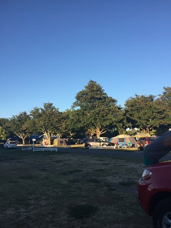 Hastings Top 10 Holiday Park: Morning view of camp