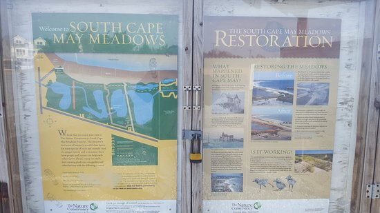 South Cape May Meadows: 20170111_123922_large.jpg