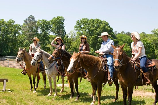 Adairsville, GA: Groups enjoy horseback riding