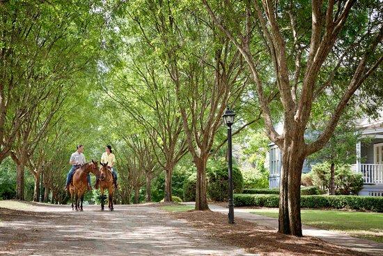Adairsville, GA: Horseback riding
