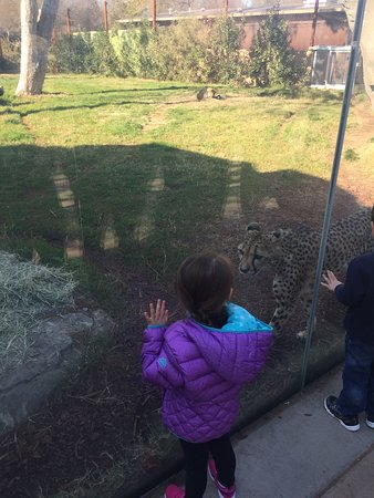 Fresno Chaffee Zoo: photo0.jpg