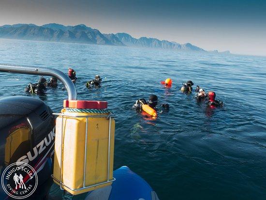Gordon's Bay, Sudáfrica: Beautiful scenery above and below the water