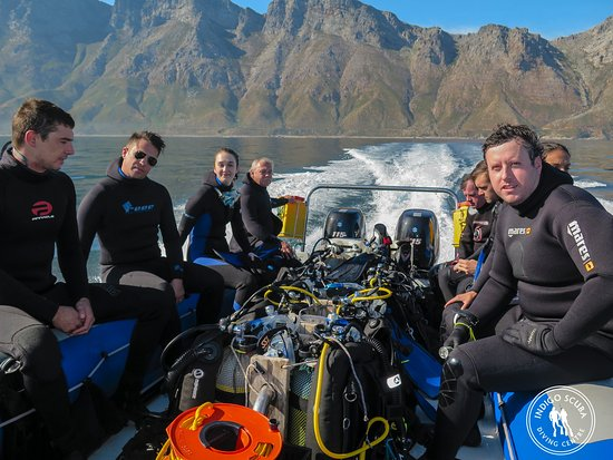 Gordon's Bay, Sudáfrica: Well take you to the best dive sites in Cape Town