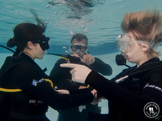 Gordon's Bay, Sudáfrica: Scuba courses in our heated indoor pool with experienced instructors