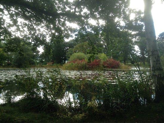 Glansevern Hall Gardens