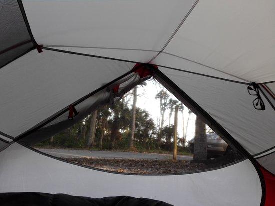 Manatee Hammock Campground: Blick aus Zelt