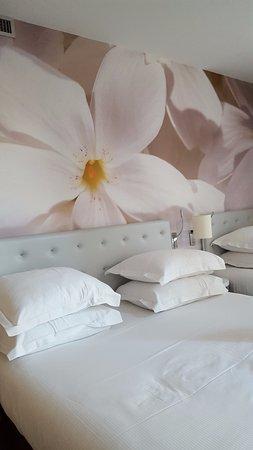 Hotel Albe Saint Michel: Room