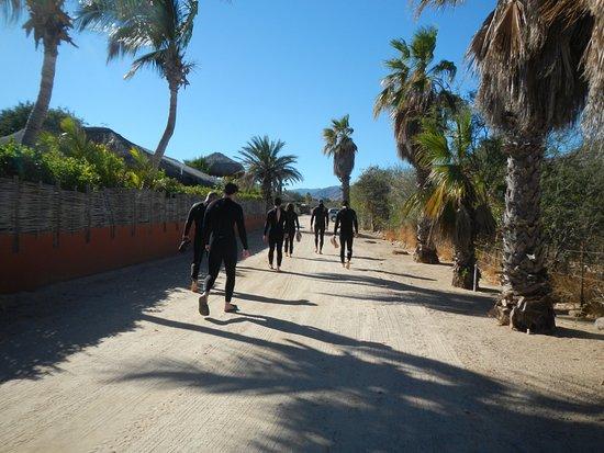 Cabo Pulmo Beach Resort: rental gear/wet suits were good.