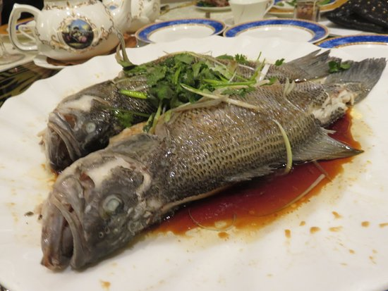 Richmond Hill, Canadá: Steamed whole sea bass with scallions, ginger and premium top soya sauce