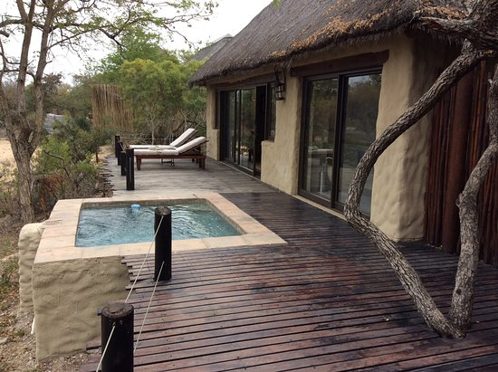 Simbambili Game Lodge: Private patio area and plunge pool