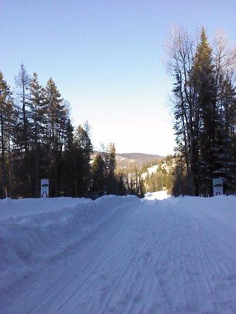 Piedmont, Canada: descente du bobsleigh