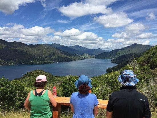 Picton, Nueva Zelanda: Lunch stop, day 4......can't fault it!