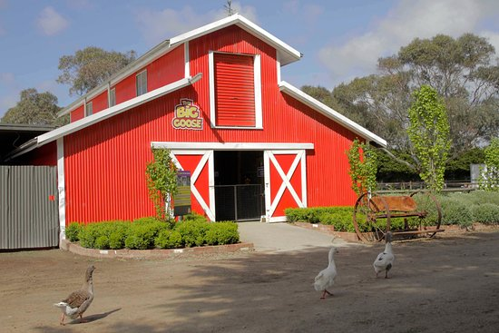 Moorooduc, Australia: The Red Shed!