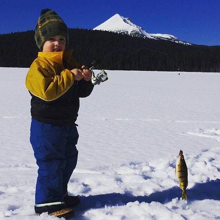 Lake of the Woods Resort: Caught his first perch!