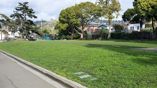 Albany, CA: Terrace Park Lawn