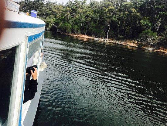 Mallacoota, Australia: photo1.jpg