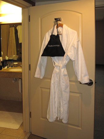 Room 736 - One bathrobe and hairdryer - Picture of Embassy