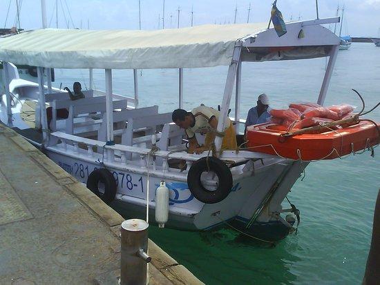 Sao Marcelo (do Mar) fort : O barco para a travessia.