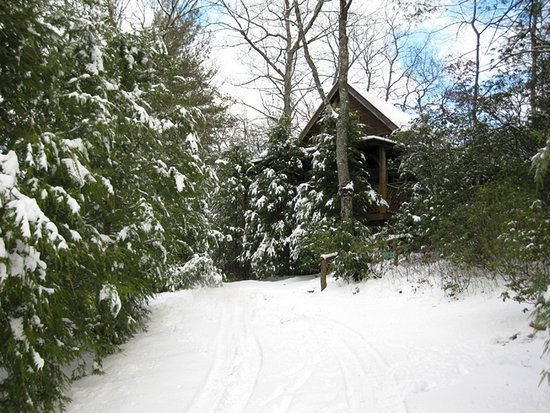 Lake Toxaway, NC: Raccoon Loft Winter Snow Pic