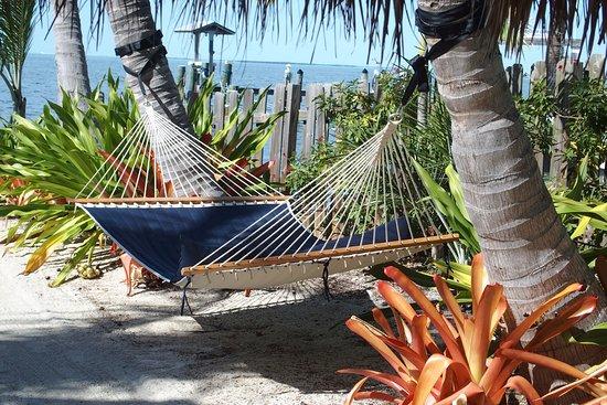 Zdjęcie Island Bay Resort