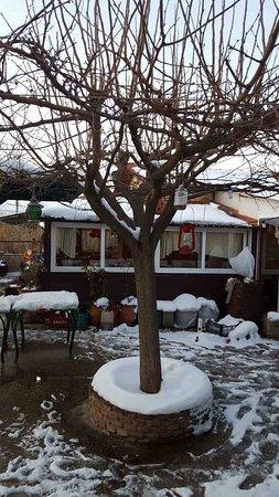 Marathon, Greece: Το μαγειριό της Μαριώς