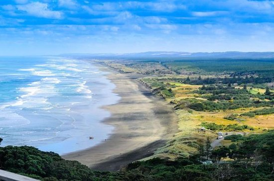 Private Tour of Muriwai Beach and