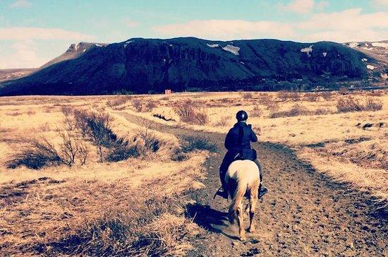Tour privado de equitación por el...