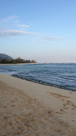 Waialua, Hawái: photo7.jpg