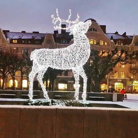 Lund, Swedia: IMG_20170112_005007_543_large.jpg
