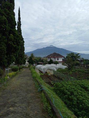 Pemandangan Indah Di Batu Malang Foto Batu Jawa Timur Tripadvisor