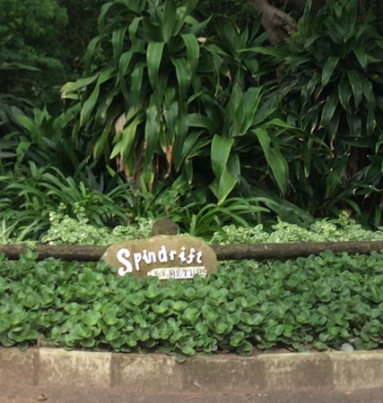 Foto de Spindrift Guest House