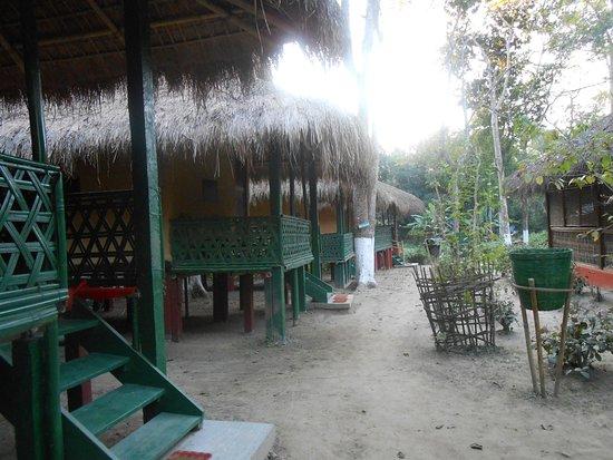写真Nature Hunt Eco Camp, Kaziranga National Park枚