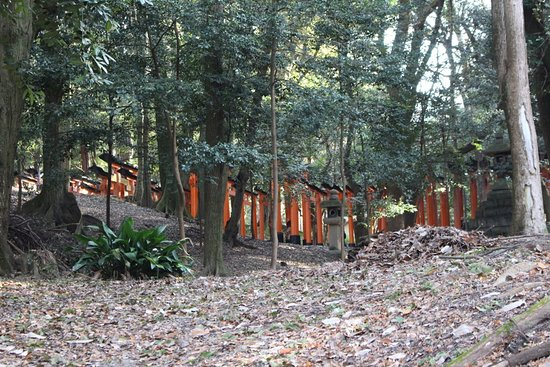 Matsubaya Inn: Nearby highlights