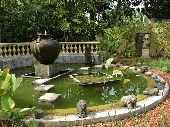 La Maison Nil Manel: Jardin
