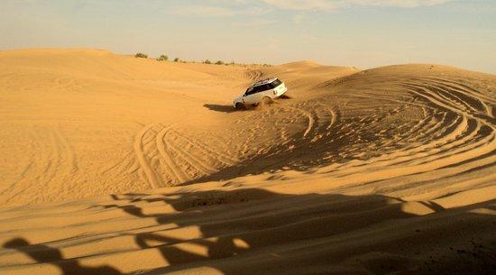 Desert Safariors Camps : Dunes Bashing in Toyota Car