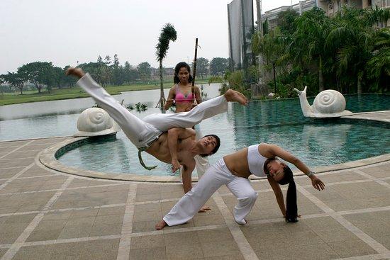 Viva Brazil Capoeira
