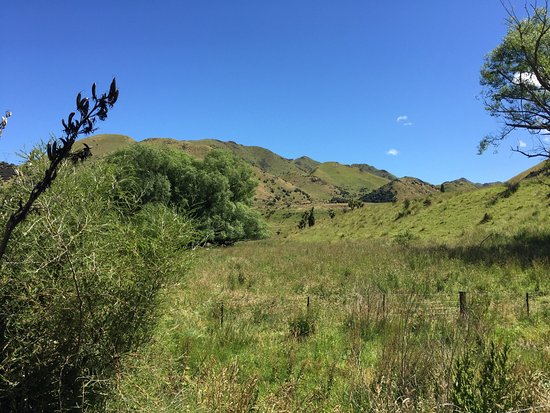Hanmer Springs, New Zealand: photo2.jpg