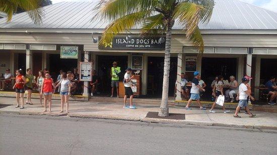 Island Dogs Bar Key West Reviews