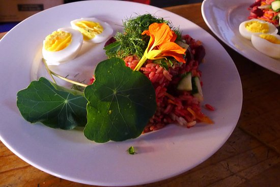 Lubanzi Village, South Africa: freshly prepared lunch with ingredients from the organic vegetable garden