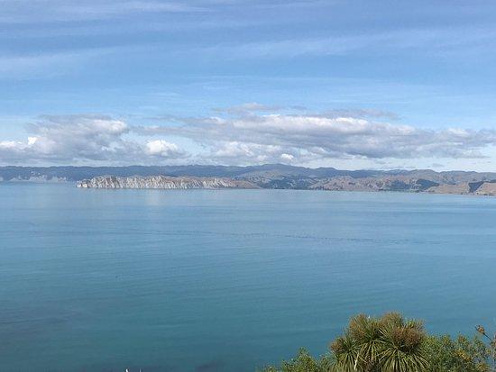 Gisborne, New Zealand: photo3.jpg