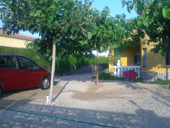 Miami Platja, España: La sombra de los arboles