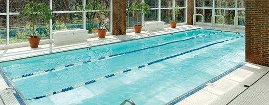 Charles Hotel: Pool